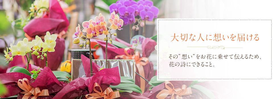 「新鮮で生き生きしているきれいなお花をお渡しする」
